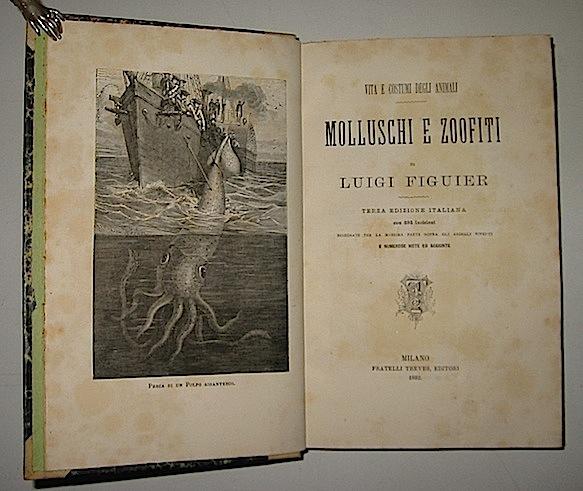 Luigi Figuier Molluschi e zoofiti 1882 Milano Treves