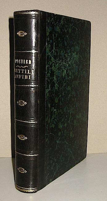 Luigi Figuier Rettili, pesci e animali articolati 1893 Milano Treves
